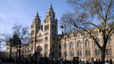 welondres - week-end a londres - musee d histoire naturelle